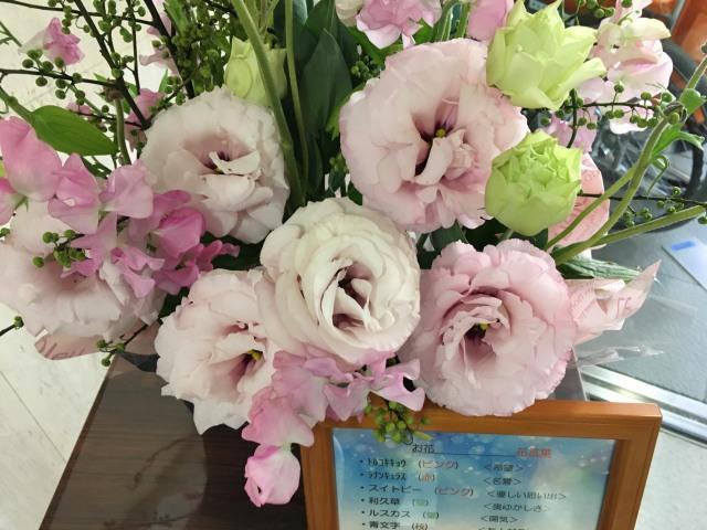 鶴巻温泉病院の1月のお花