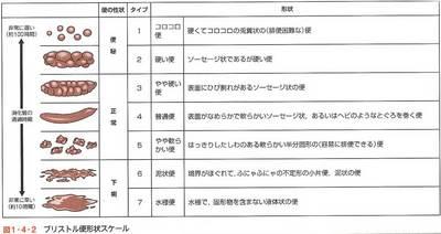 nst_2_1-4-2.jpg