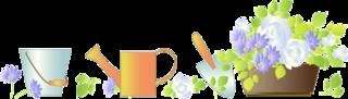 SSDブログイメージ